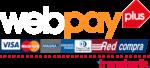 logo-web-pay-plus-1024x460